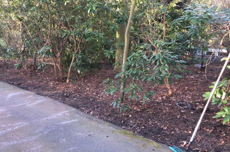 Aanleggen graszone 8