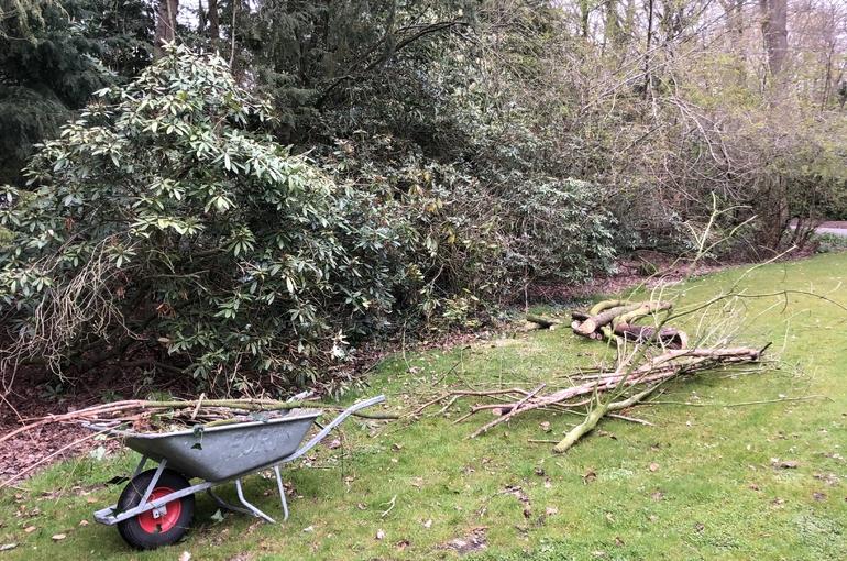 Opkuisen tuin en afvoeren groenafval 2