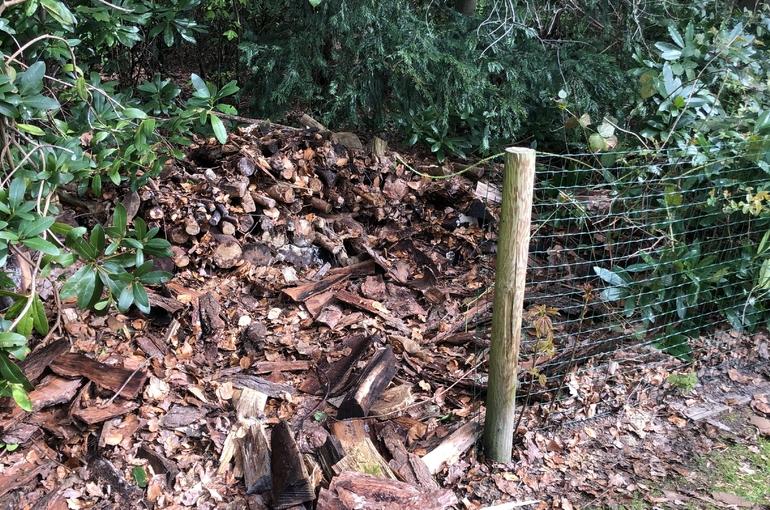 Opkuisen tuin en afvoeren groenafval 3