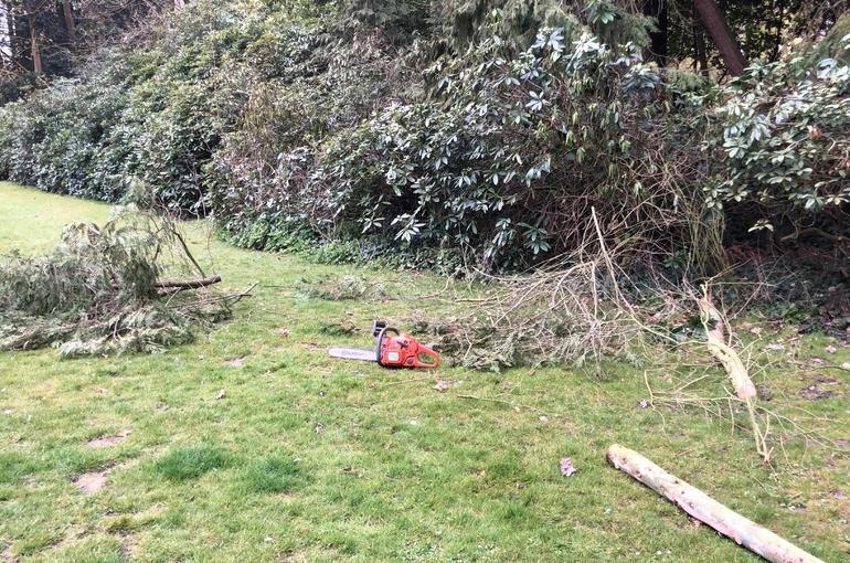 Opkuisen tuin en afvoeren groenafval 4