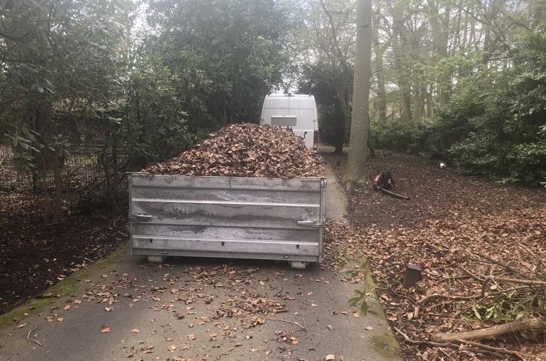 Opkuisen bladeren en wegvoeren met groenafvalcontainer 2