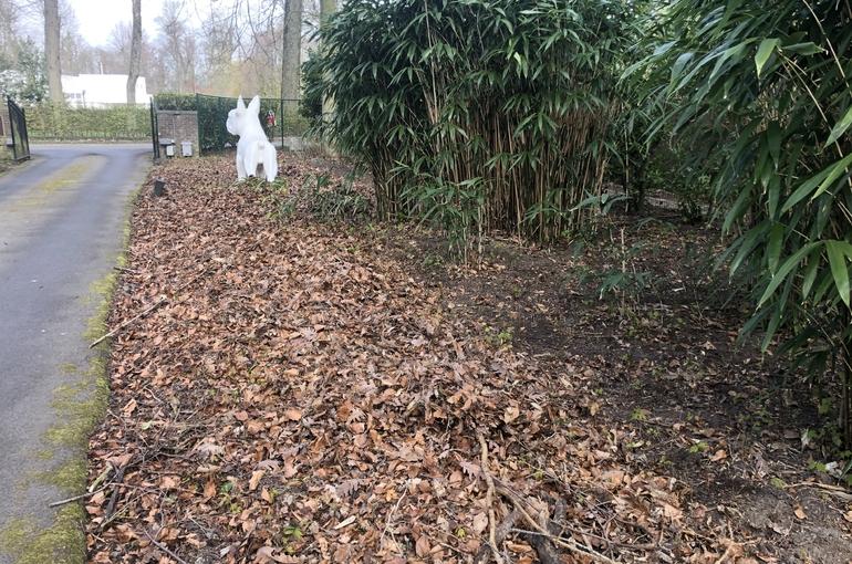 Opkuisen bladeren en wegvoeren met groenafvalcontainer 9