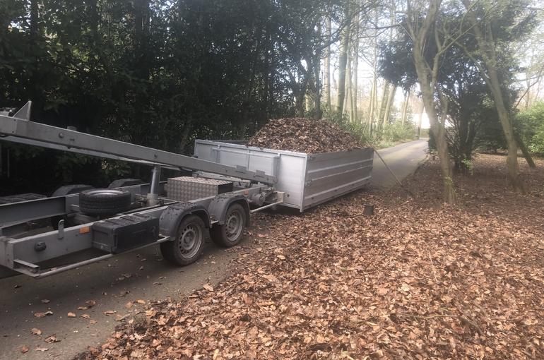 Opkuisen bladeren en wegvoeren met groenafvalcontainer 12